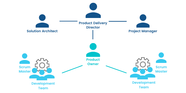 Agile Software Development Team Structure
